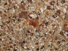 Krmná směs GAMBIAN
