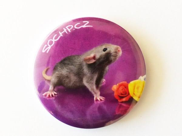 Magnetka: Potkan s růžemi