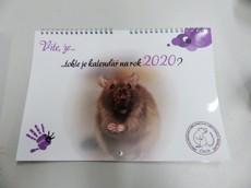 """Nástěnný kalendář POTKANI 2020: """"Víte,že..."""""""