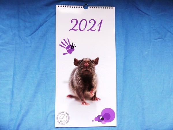 Rodinný plánovací kalendář POTKANI 2021