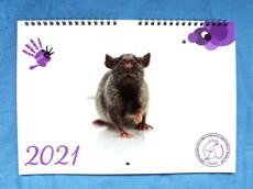 Nástěnný kalendář POTKANI 2021