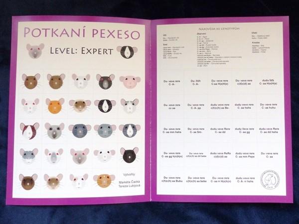 "Potkaní pexeso: level ""expert"""