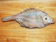 Sušený mořský platýs malý 1 ks
