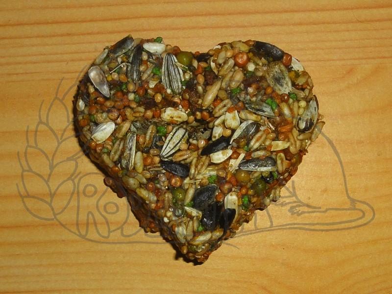Hryzací srdíčko velká semena