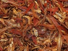 Směs sušeného masa s červíky 50 / 100 / 250 g
