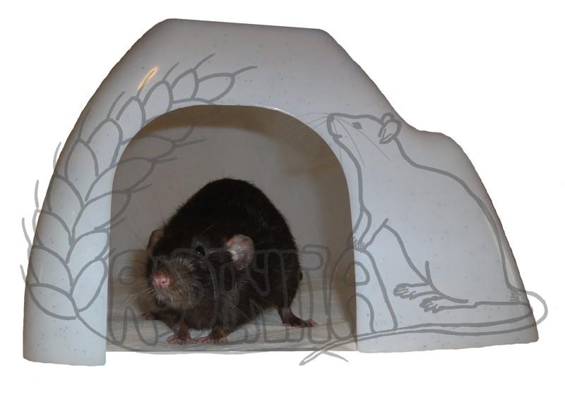 Domek IGLU králík