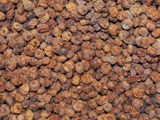 Zemní mandle (chufa) 100 g